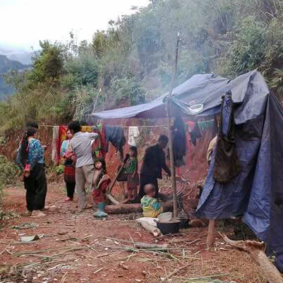 The three families are living under a tarp in the jungle.
