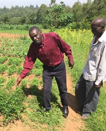 Persecuted Christians in Kenya are beginning farming projects to help support their churches.